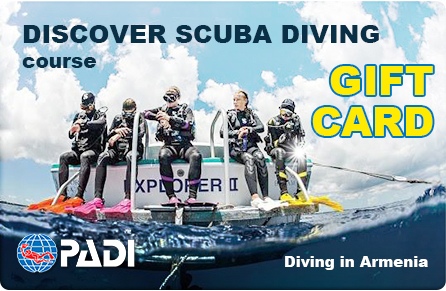 Discover Scuba Diving Giftcard