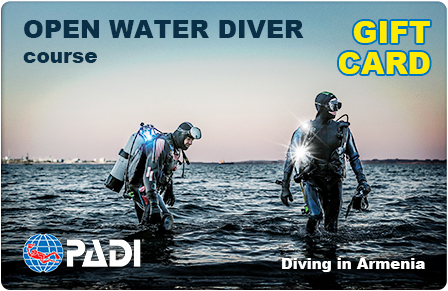 Open Water Diver giftcard